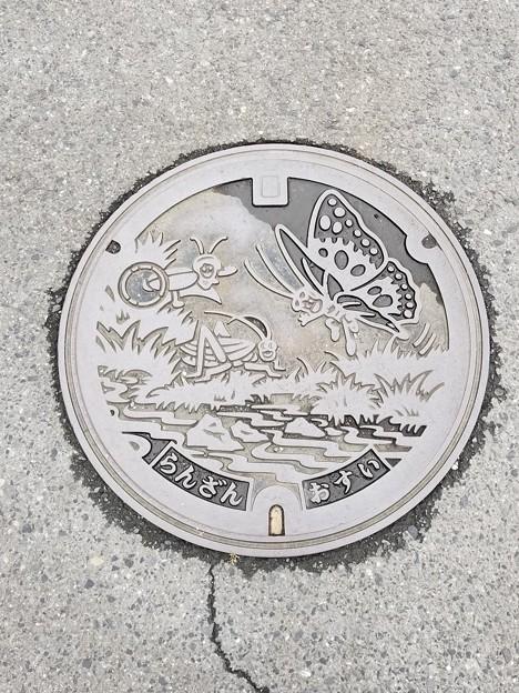 埼玉県比企郡嵐山町のフタ(おすい)