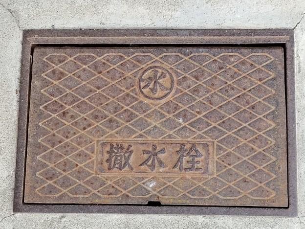 水道のフタ(撒水栓)