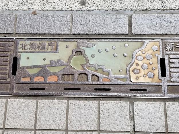 新千歳空港のフタ(北海道庁)