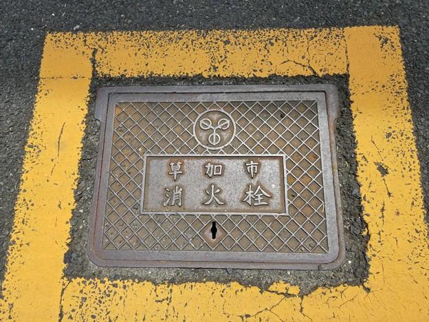 埼玉県草加市のフタ(消火栓)