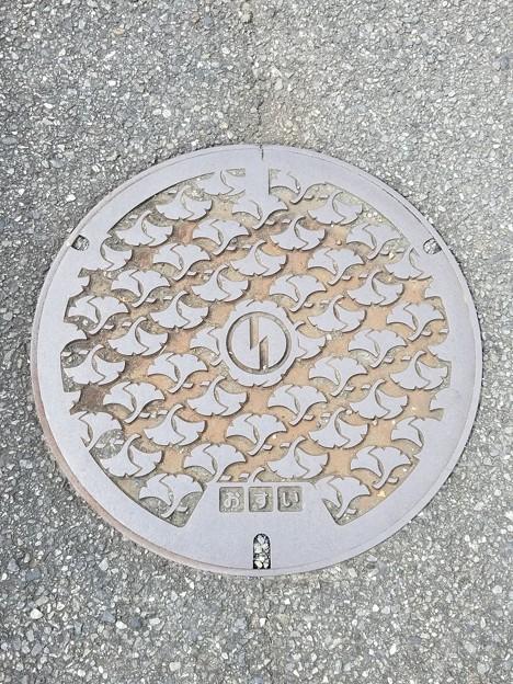 東京都稲城市のフタ(おすい)