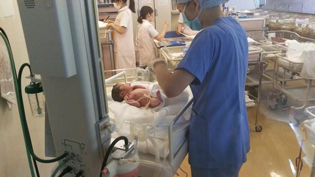 写真: 孫誕生数分後