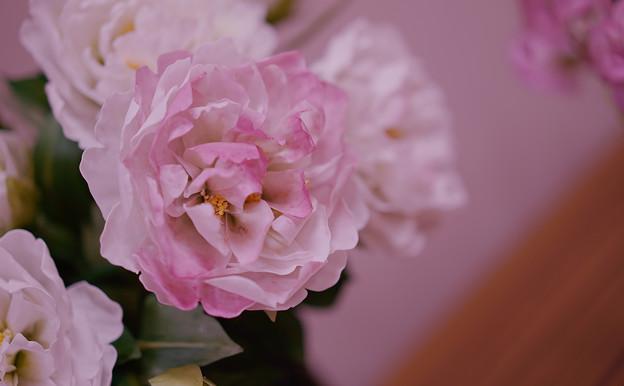 花遊び展5-3