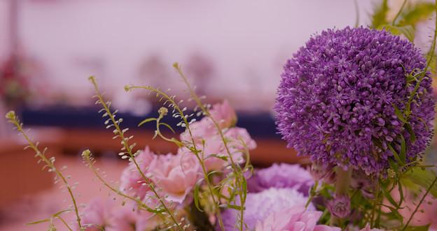 花遊び展 6-3