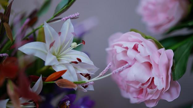 花遊び展 6-4