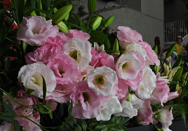 ゆめ花の宴_5