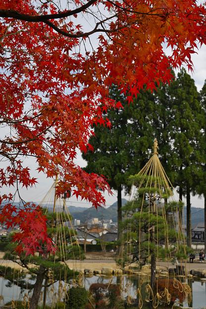紅葉_香山公園1-3