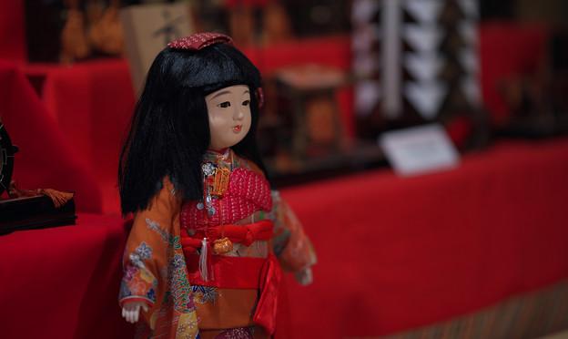 Photos: 萩古雛祭り5-1