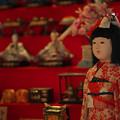 Photos: 萩古雛祭り5-4