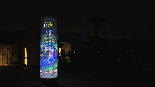 チームラボ ・ときわ公園1_1