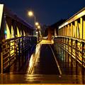 雨上がりの橋