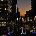12月21日、日没後の富士見テラスから(8)