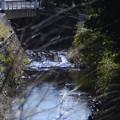 所沢市内、二瀬橋付近