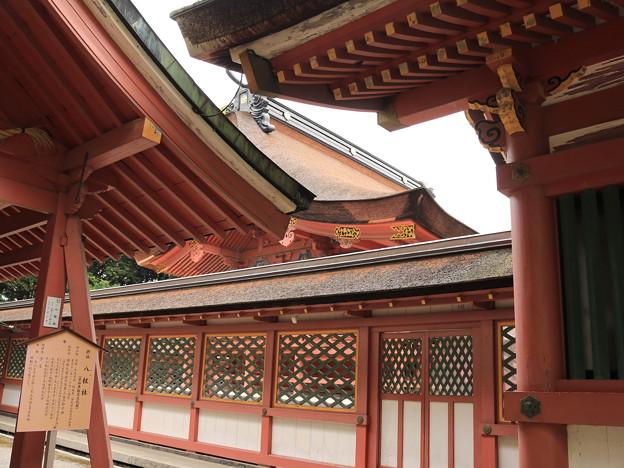 津島神社11