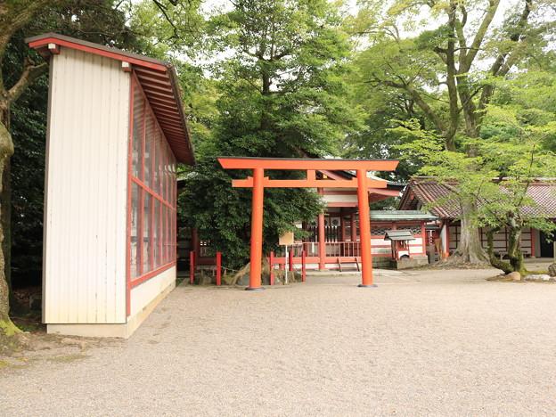 津島神社13
