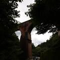 写真: 眼鏡橋001