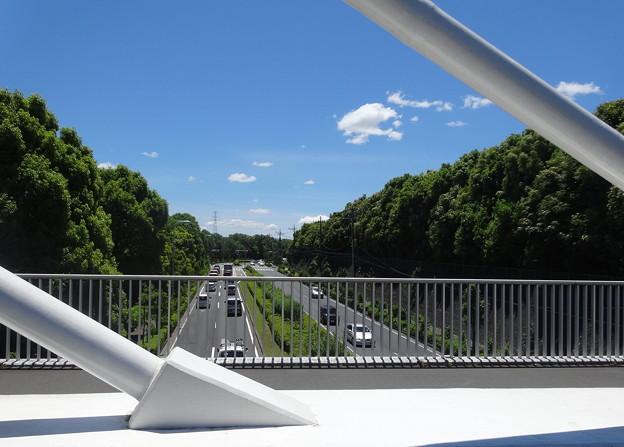 陸橋の上から   2