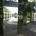 Photos: きらめきの池  4/5