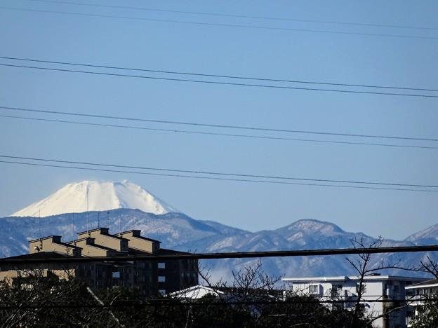 富士山と丹沢連峰   2/2