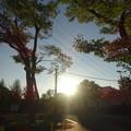Photos: 優しい朝日