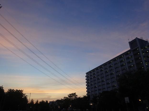 Photos: 日の出を見たくて  (1/3)