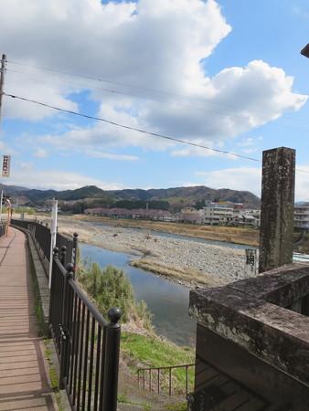 修善寺 狩野川と桜並木