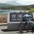 写真: 西湖からの富士山