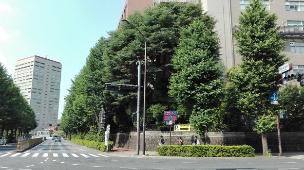 Photos: 神田明神前