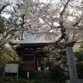 Photos: 観音禅寺@津久井湖
