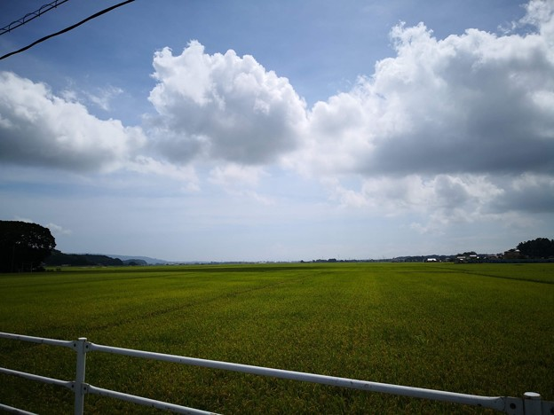 Photos: 田園風景@常陸太田
