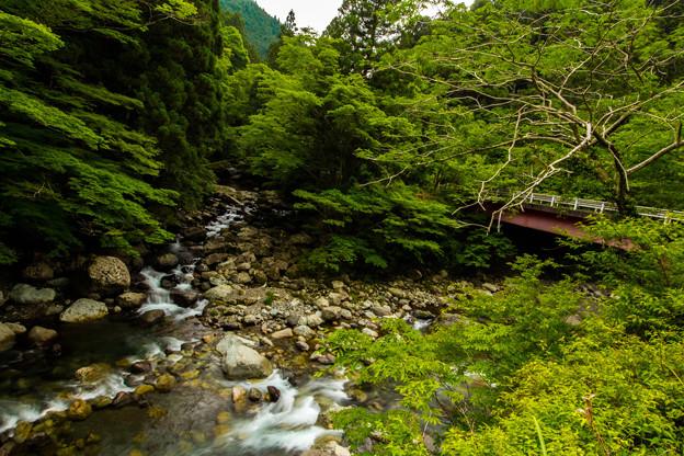 川の先、橋の先