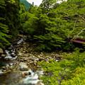 写真: 川の先、橋の先