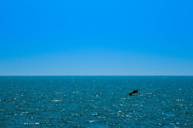 一人だけの大海原