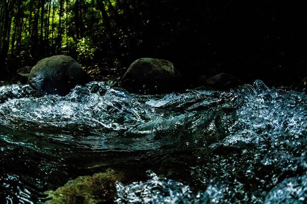 渓流、静止した世界