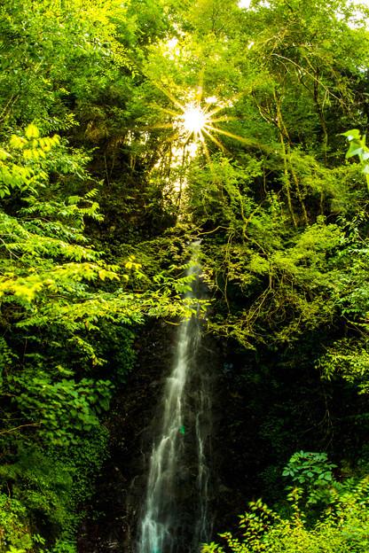 写真: 後光射す滝