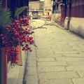 新春の祇園