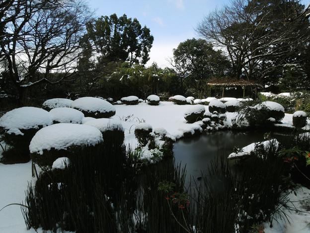 雪の詩仙堂_7