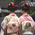 Photos: 祇園の華