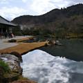 写真: 古都そぞろ歩き ● 冬の風景 ● 嵐山天龍寺曹源池