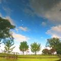 Photos: 池に映った風景2