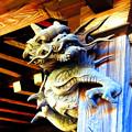 Photos: ドラゴン