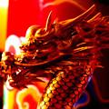 沖縄のドラゴンは輝いている