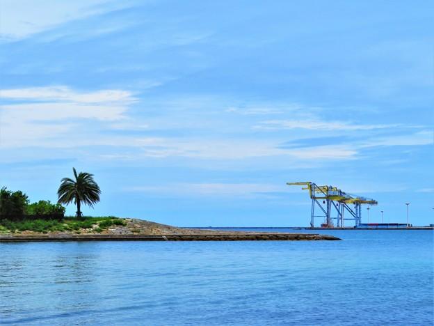 写真: 那覇港2