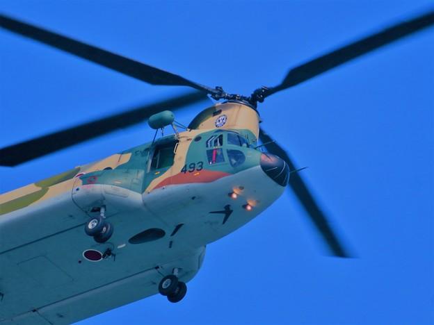 ヘリコプター自衛隊