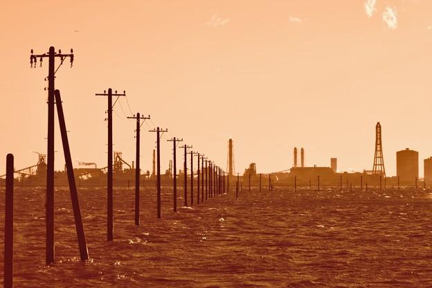 荒波の電信柱