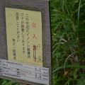 Photos: 千葉・鋸南町 佐久間ダム散歩 (1-2)