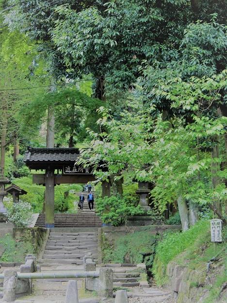 Photos: 鎌倉ハイキング-1-