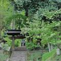 鎌倉ハイキング-1-
