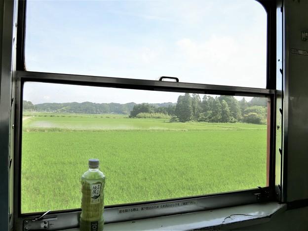 写真: キハ52の車窓から