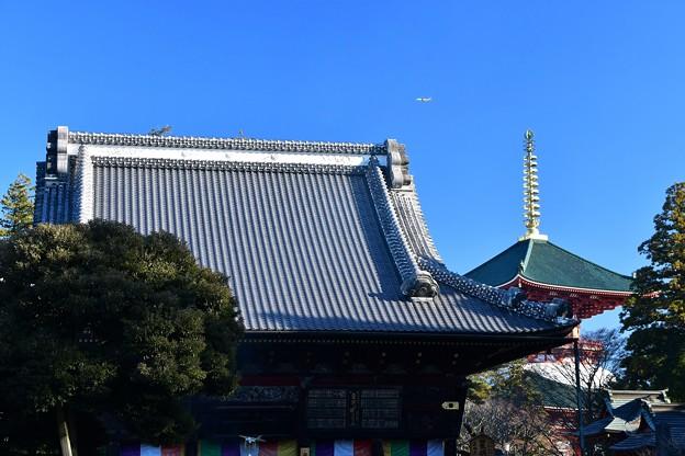 成田山新勝寺 光明堂と平和の大塔